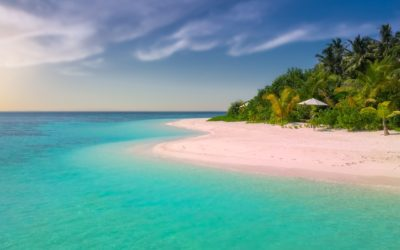 5 Unbeatable Reasons for You to Join Our Tropical Wellness Retreat